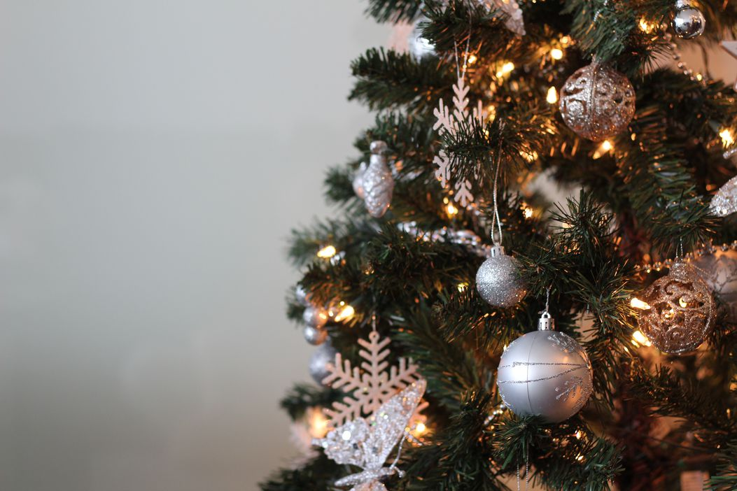 Christmas tree sales hit record highs