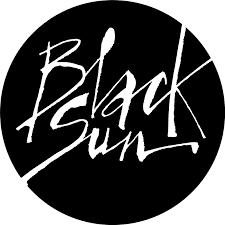 Black Sun Plc logo